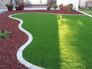 Como plantar grama no quintal