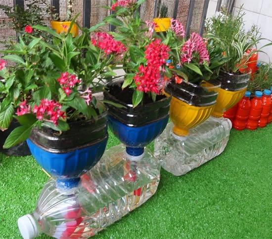 decoração de jardim com garrafa pet